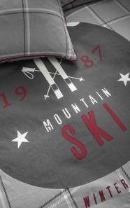 zoom ski mountain
